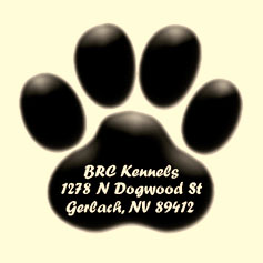BRC Kennels - April Fool's - 2009